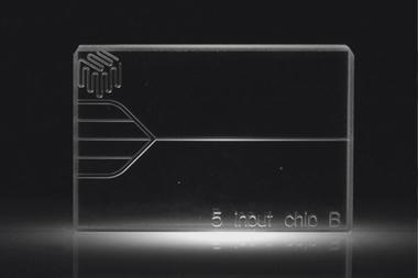 5 Input Chip