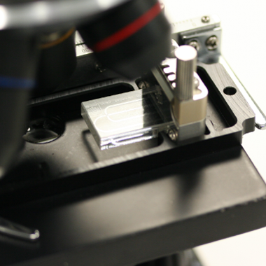 Microscope Stage Adaptor for Top Interfaces