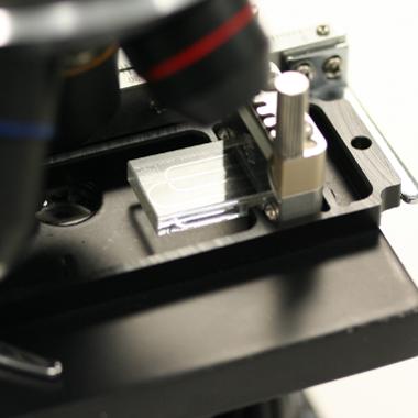 Microscope Stage Adaptor