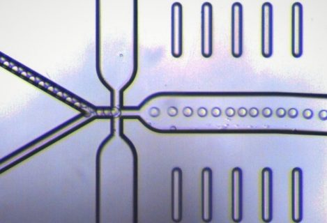 Continuous production of a double emulsion in a uEncapsulator Chip