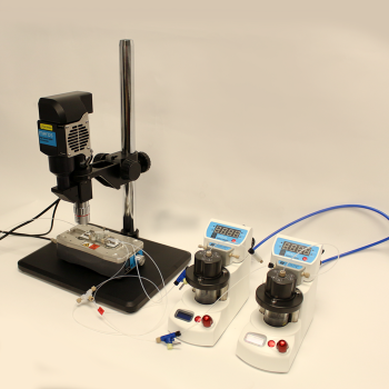 Polymer Particle Synthesis