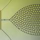 Micro Droplet Generation